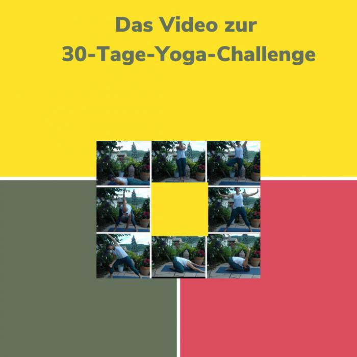 kostenloses Video Yoga für Anfänger